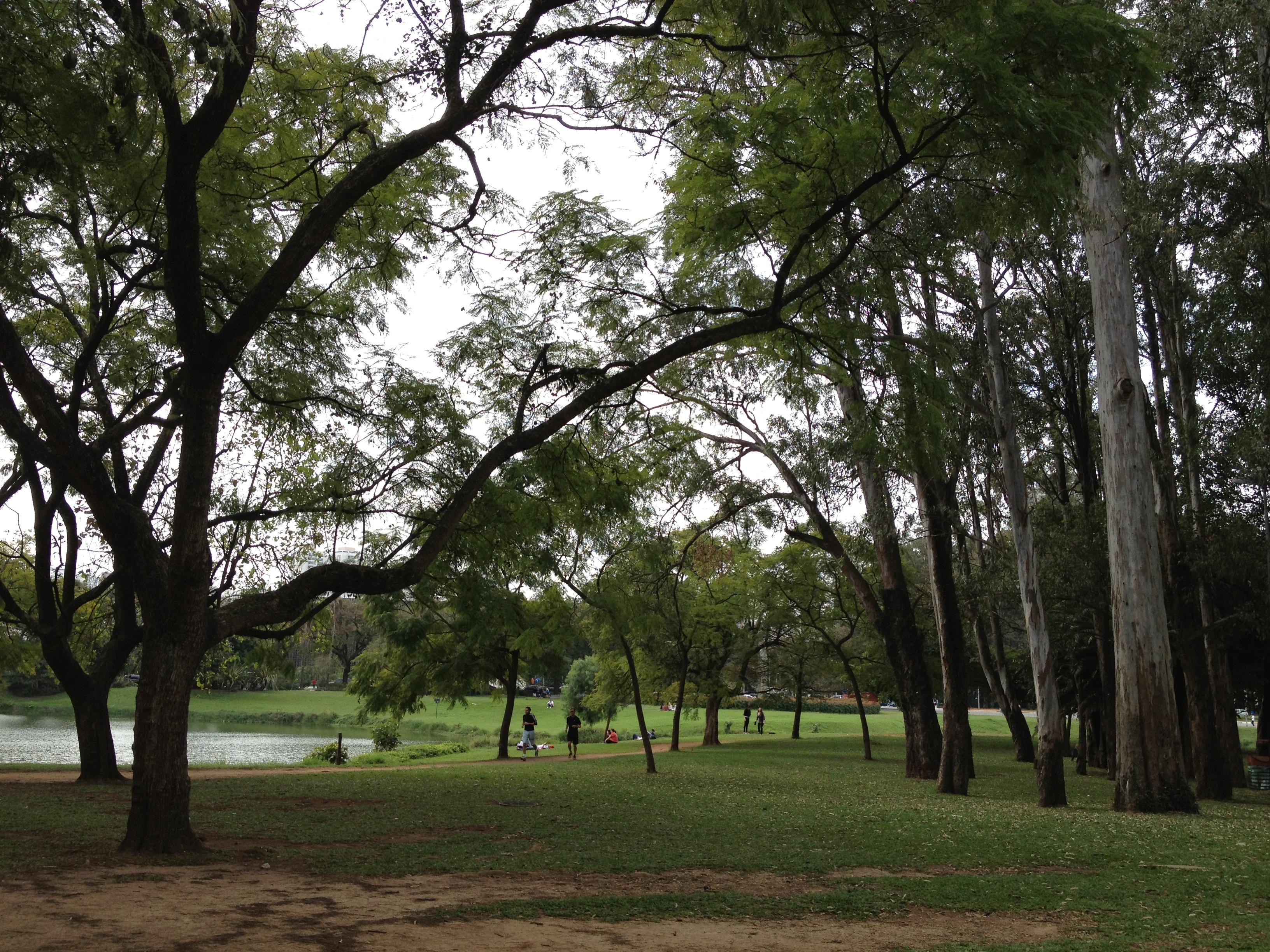 サンパウロの公園
